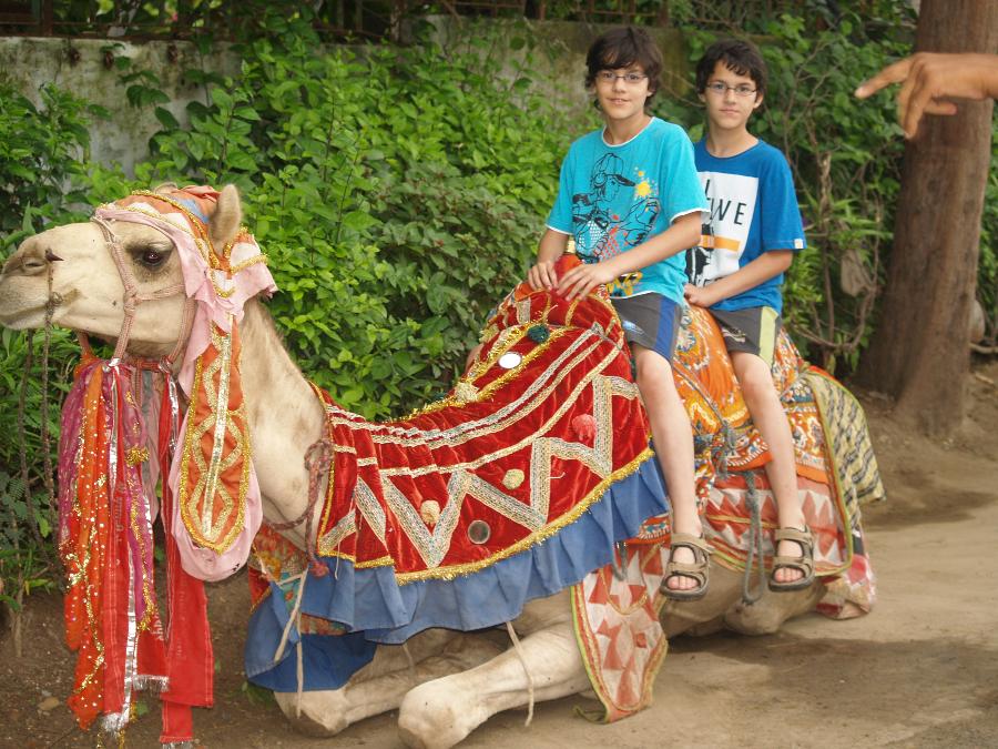 Zwillingsratgeber p1011238 Erste Tour nach Udaipur und Pushkar